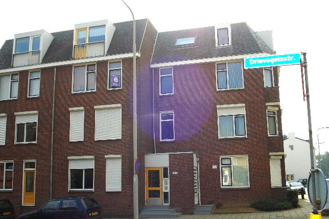 Drievogelstraat 217_12